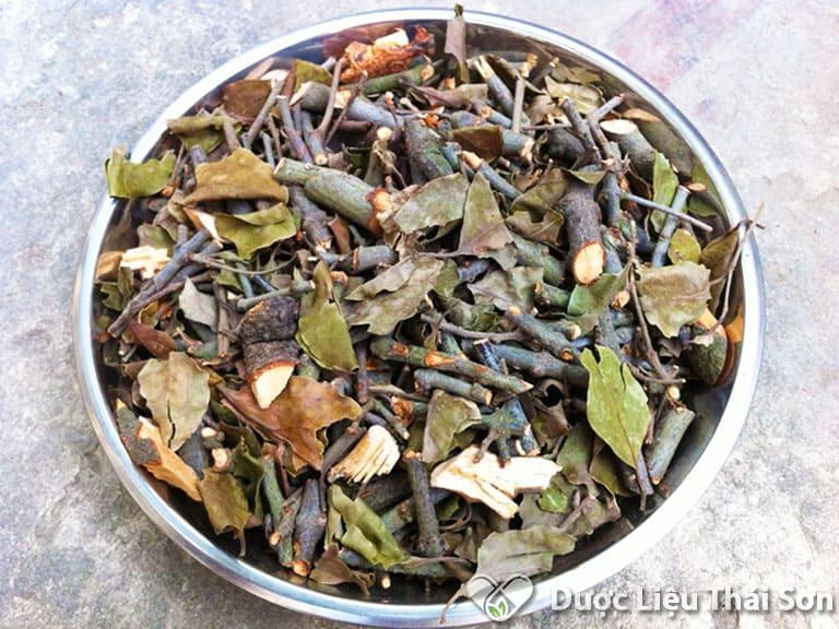 Hình ảnh sản phẩm tầm gửi cây gạo Thái Sơn cung cấp được nhiều người tin tưởng và sử dụng