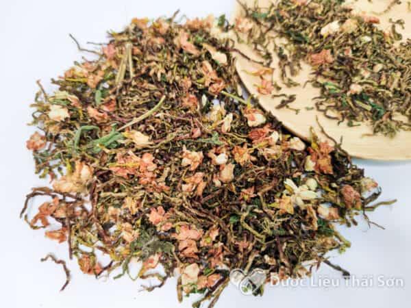 hình ảnh trà sơn mật hồng sâm