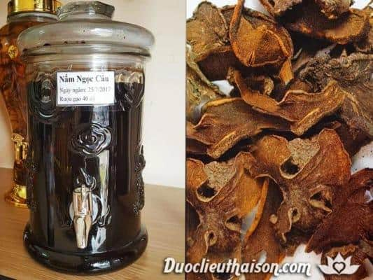Hình ảnh rượu ngâm nấm ngọc cẩu