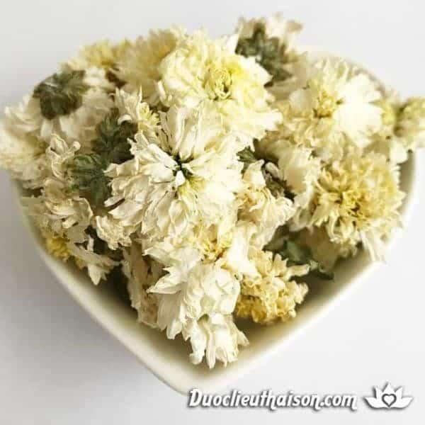Hình ảnh trà hoa cúc Dược Liệu Thái Sơn cung cấp