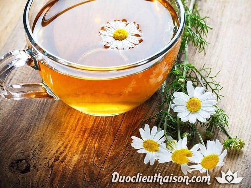 Lợi ích của trà hoa cúc
