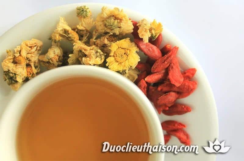 Trà hoa cúc có nhiều tác dụng cho sức khỏe