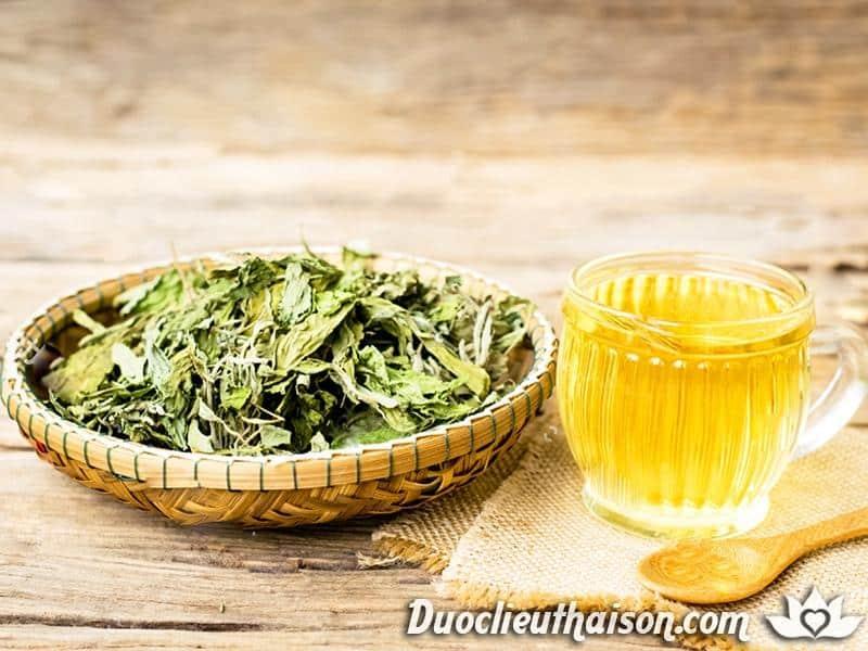 Trà cỏ ngọt tốt cho sức khỏe