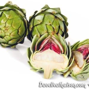 Hoa Atiso có nhiều thành phần tốt cho sức khỏe