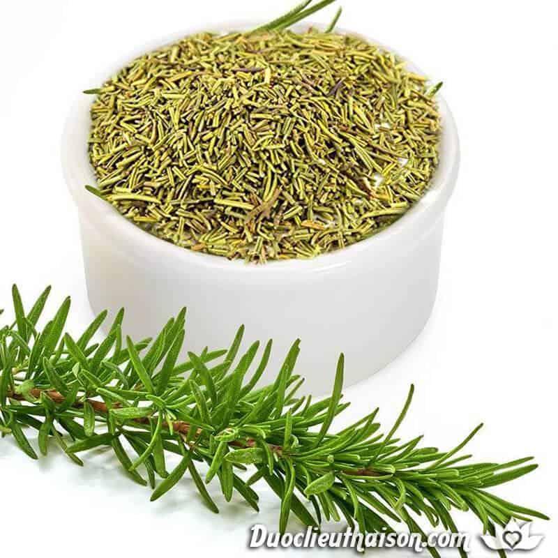 Cây hương thảo có nhiều công dụng chữa bệnh