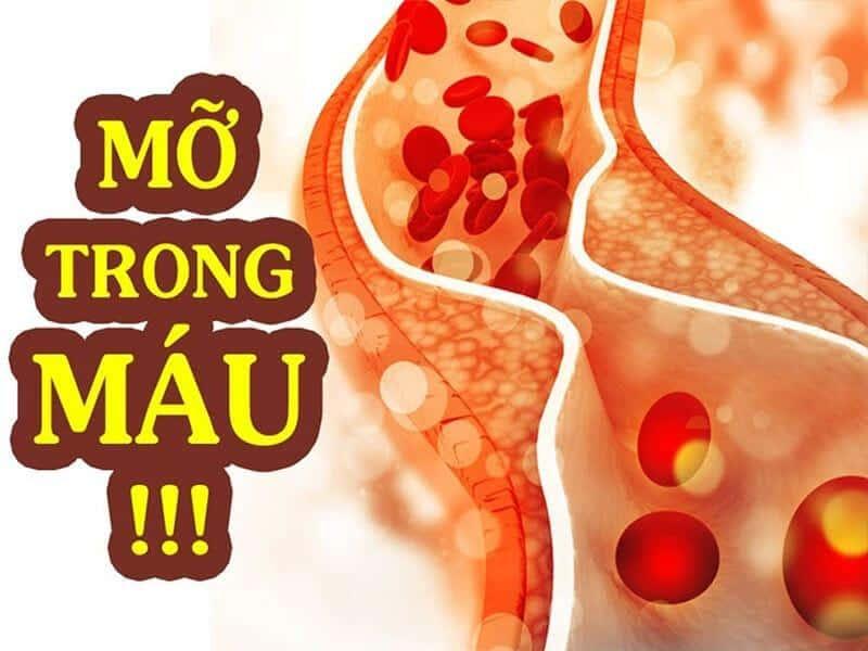 Lá sen giúp điều trị mỡ trong máu hiệu quả