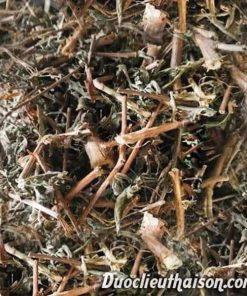 Sản phẩm cây rau mương khô
