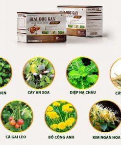 Thành phần với các cây thuốc nam quý, mang lại hiệu quả điều trị tốt nhất cho Gan.