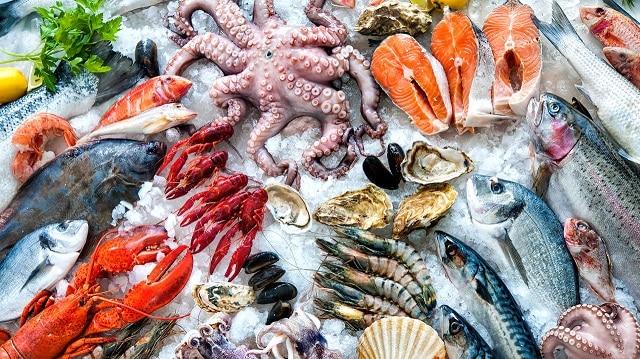 Cá biển có nhiều đạm và thủy ngân không phải là thực phẩm tốt cho người đang uống thuốc An Xoa