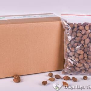 Hình ảnh hạt ươi do DƯợc liệu Thái Sơn cung cấp được khách hàng tin tưởng và sử dụng