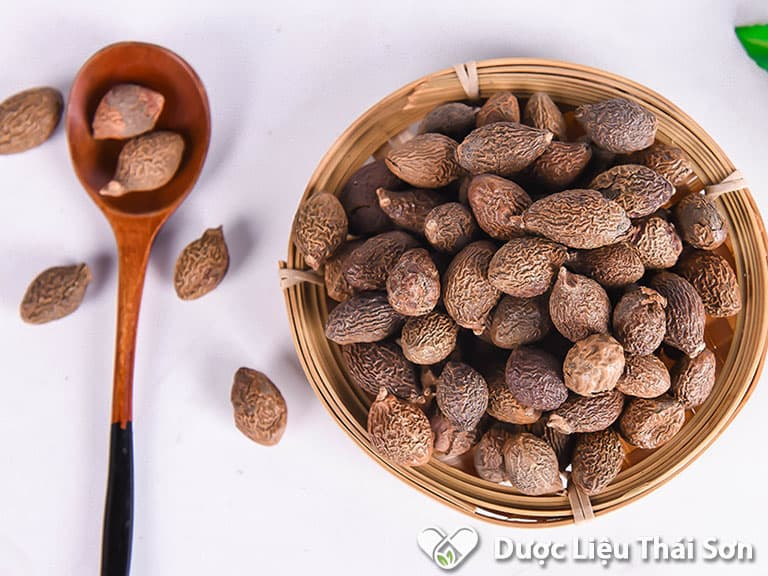Hạt đười ươi có giá trị dinh dưỡng cao, thích hợp để sử dụng mỗi ngày