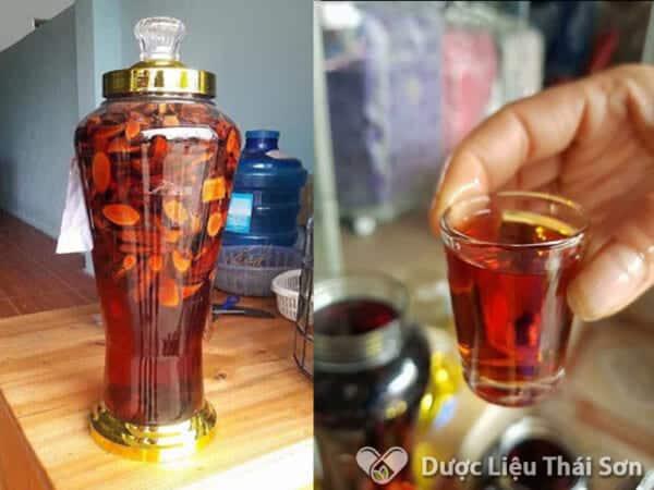 Bạn có thể sử dụng cây Mú Tửn để ngâm rượu