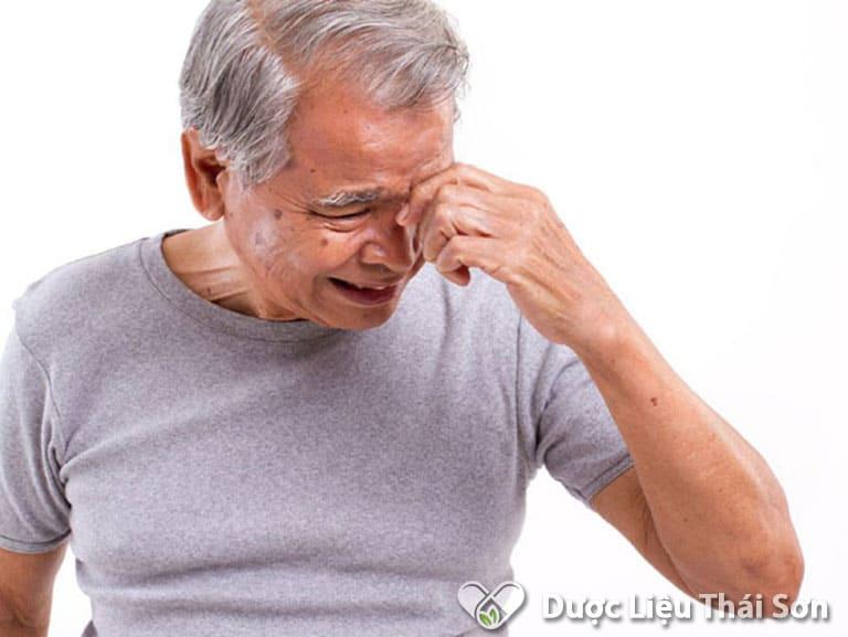 Thảo dược phù hợp sử dụng cho đối tượng suy giảm trí nhớ, căng thẳng
