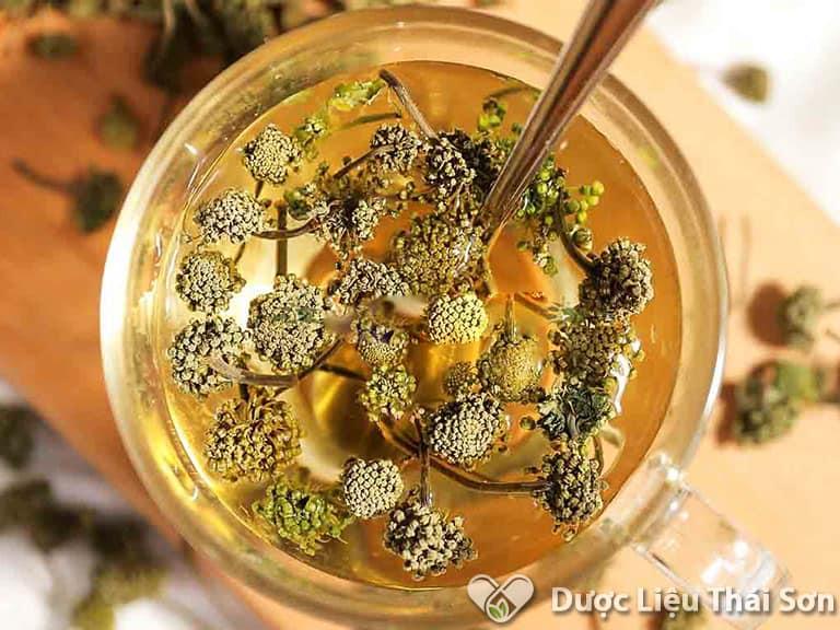 Sử dụng trà nụ hoa tam thất mỗi ngày rất tốt cho sức khỏe